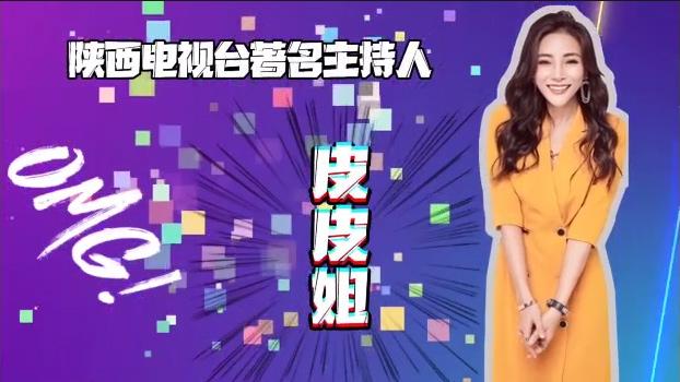 陕西电视台著名主持人皮皮姐带你了解万通!